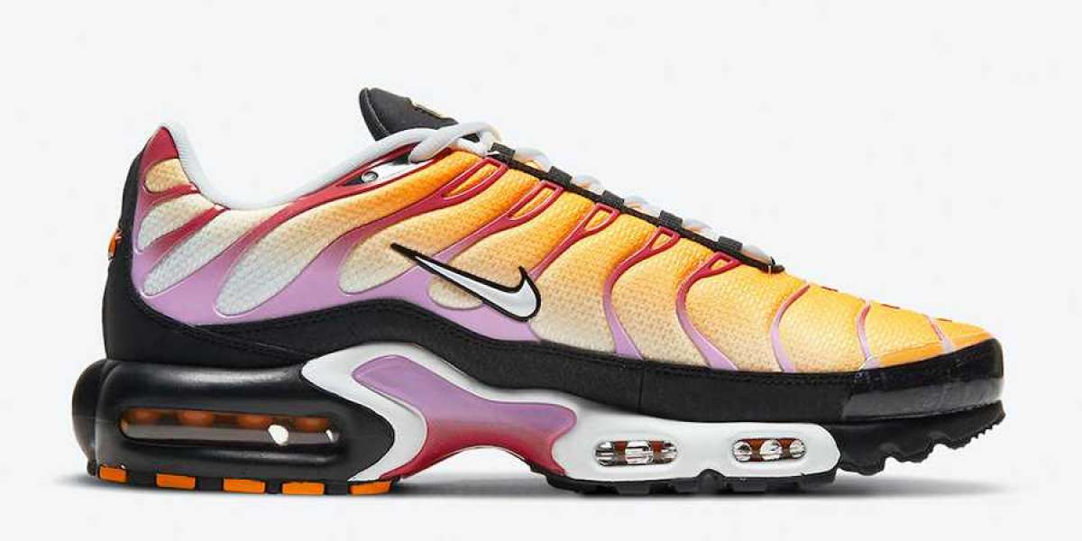 Nike Air Max Plus CZ1651-800 2021 New Released