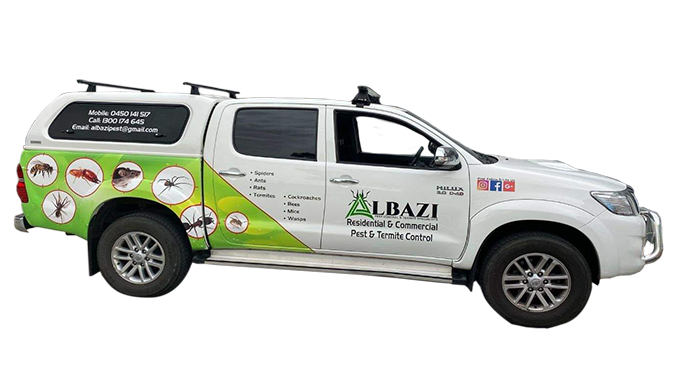 Best Pest Control & Termite Control treatment in Melbourne - Albazi Pest